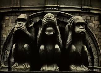 3 macacos.jpg